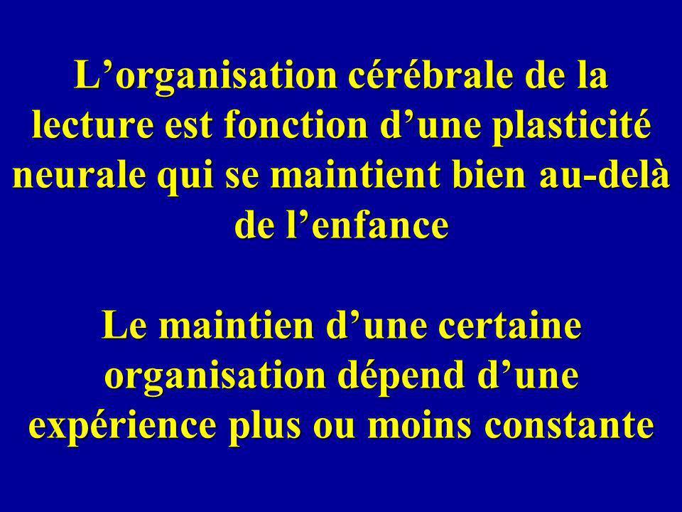 Lorganisation cérébrale de la lecture est fonction dune plasticité neurale qui se maintient bien au-delà de lenfance Le maintien dune certaine organis