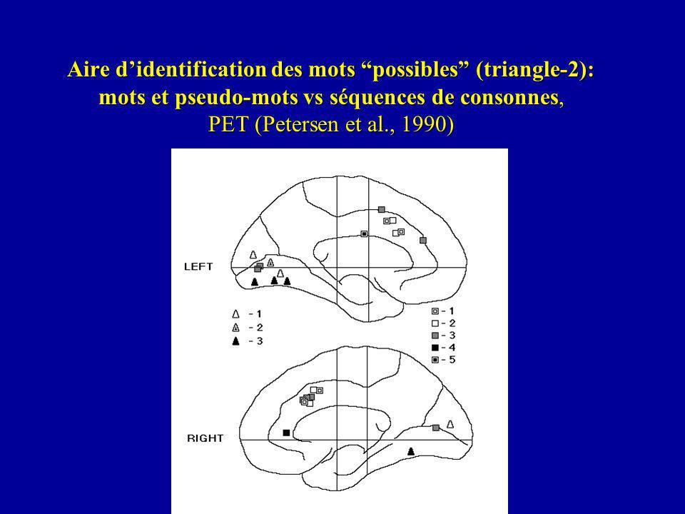 Aire didentification des mots possibles (triangle-2): mots et pseudo-mots vs séquences de consonnes, PET (Petersen et al., 1990)