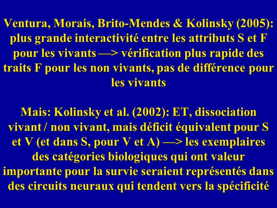 Ventura, Morais, Brito-Mendes & Kolinsky (2005): plus grande interactivité entre les attributs S et F pour les vivants > vérification plus rapide des