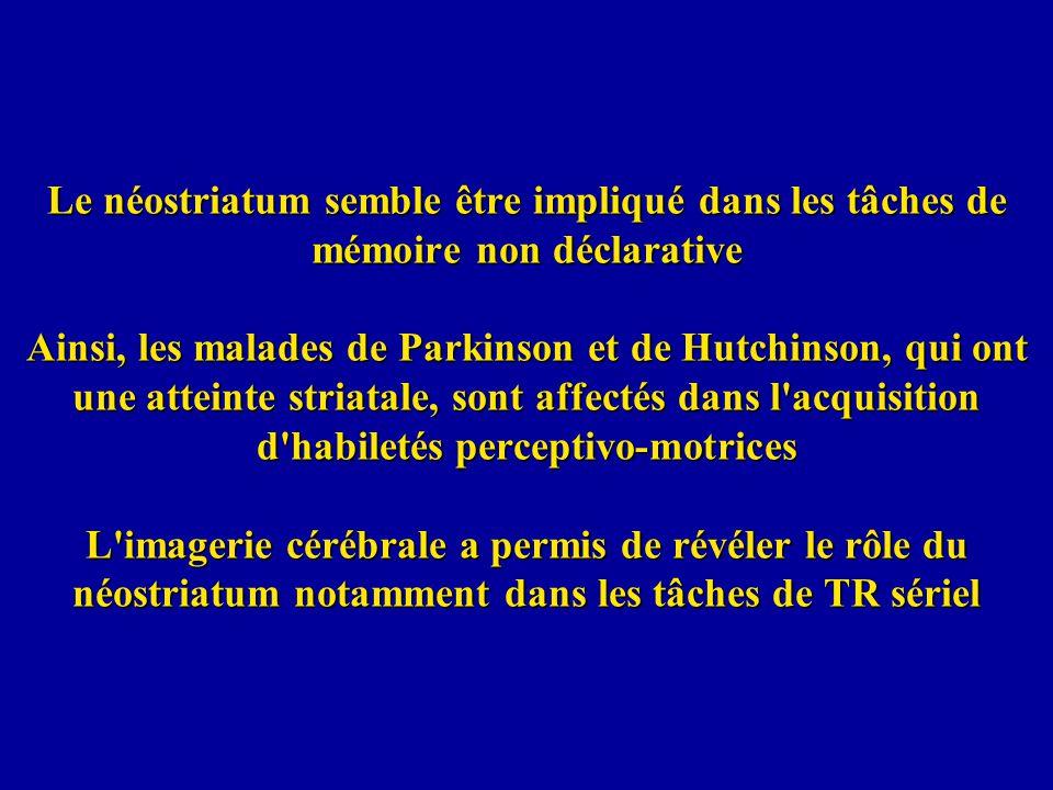 Le néostriatum semble être impliqué dans les tâches de mémoire non déclarative Ainsi, les malades de Parkinson et de Hutchinson, qui ont une atteinte