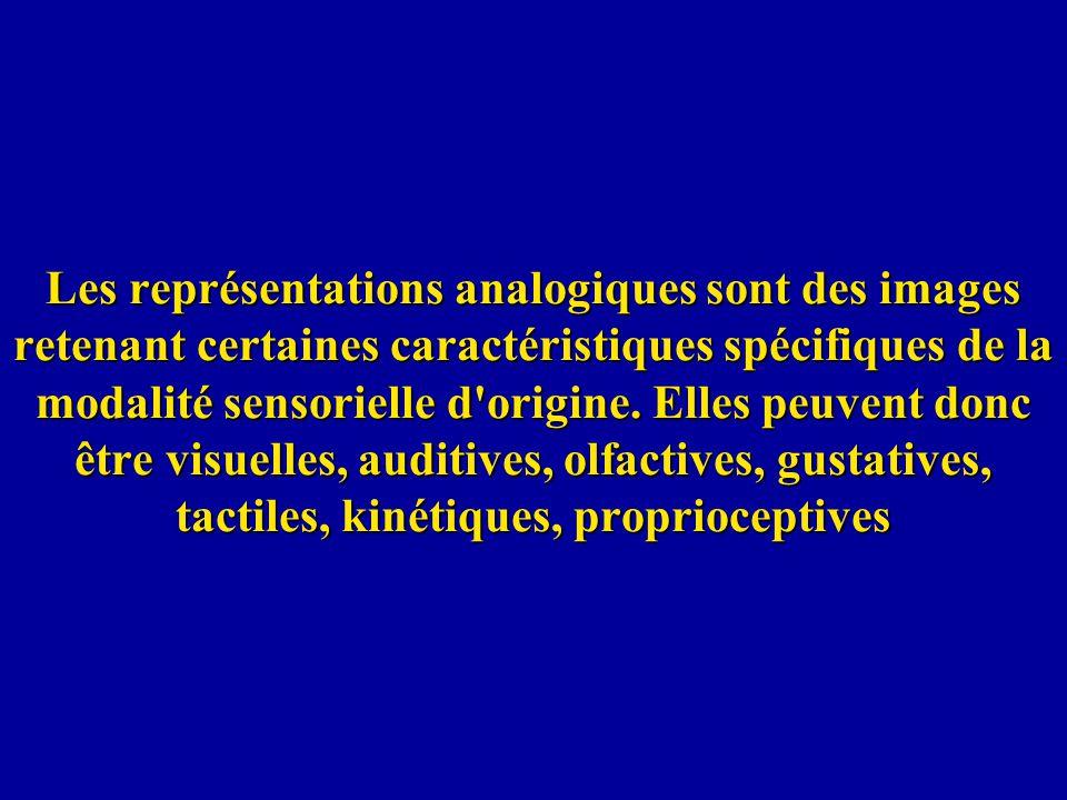 Les représentations analogiques sont des images retenant certaines caractéristiques spécifiques de la modalité sensorielle d'origine. Elles peuvent do