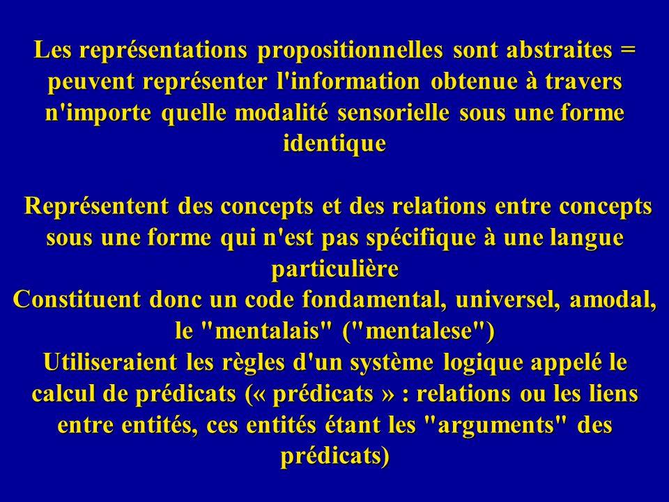 Les représentations propositionnelles sont abstraites = peuvent représenter l'information obtenue à travers n'importe quelle modalité sensorielle sous