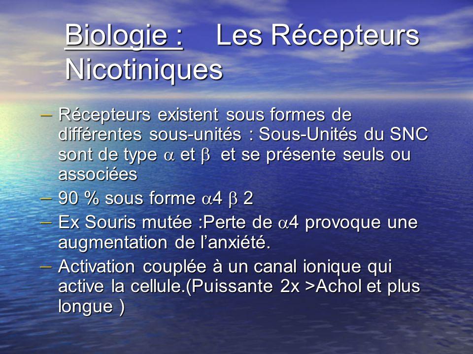 Biologie : Les Récepteurs Nicotiniques – Récepteurs existent sous formes de différentes sous-unités : Sous-Unités du SNC sont de type et et se présent