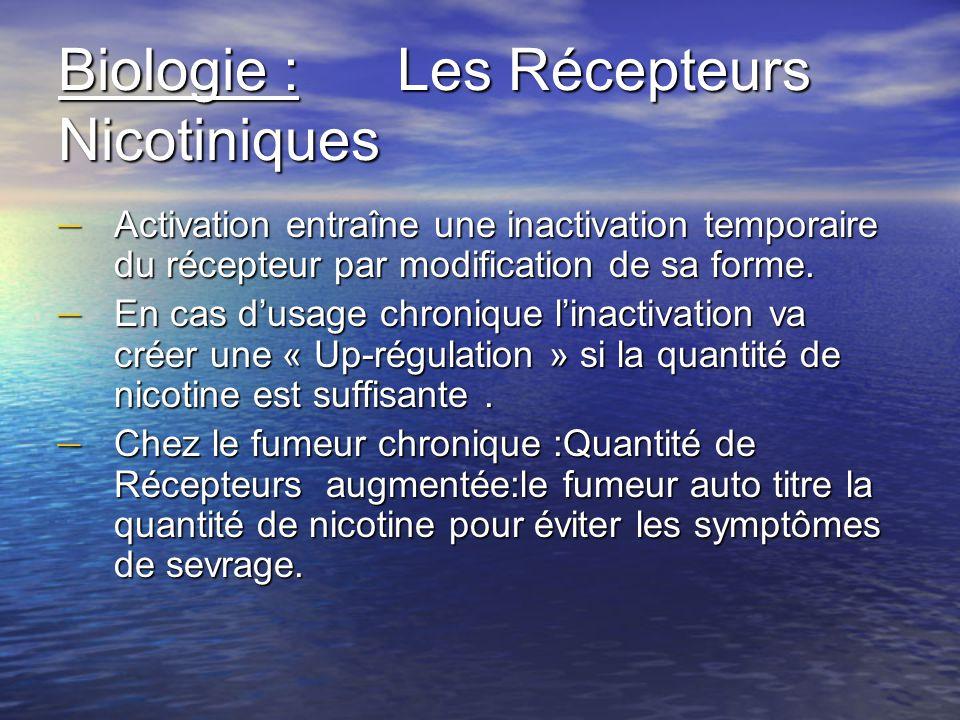 Biologie : Les Récepteurs Nicotiniques – Activation entraîne une inactivation temporaire du récepteur par modification de sa forme. – En cas dusage ch
