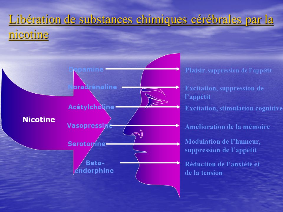 Dopamine Plaisir, suppression de lappétit Noradrénaline Excitation, suppression de lappétit Acétylcholine Excitation, stimulation cognitive Vasopressi