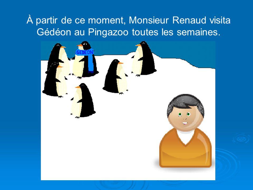 Soulagé de sa découverte, Monsieur Renaud pris une sage décision: «Je vais envoyer Gédéon au Pingazoo. » « Il pourra vivre au froid et se faire des am