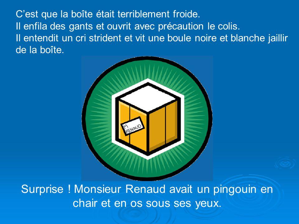 Sur la boîte, une petite note provenant du Capitaine Sardine disait : « Mon cher Monsieur Renaud, voici quelque chose pour vous aider à en savoir plus