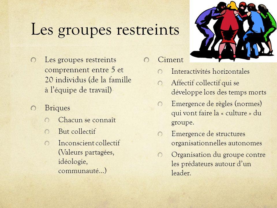 Les groupes restreints Les groupes restreints comprennent entre 5 et 20 individus (de la famille à léquipe de travail) Briques Chacun se connaît But c