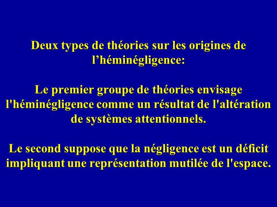 Deux types de théories sur les origines de lhéminégligence: Le premier groupe de théories envisage l'héminégligence comme un résultat de l'altération