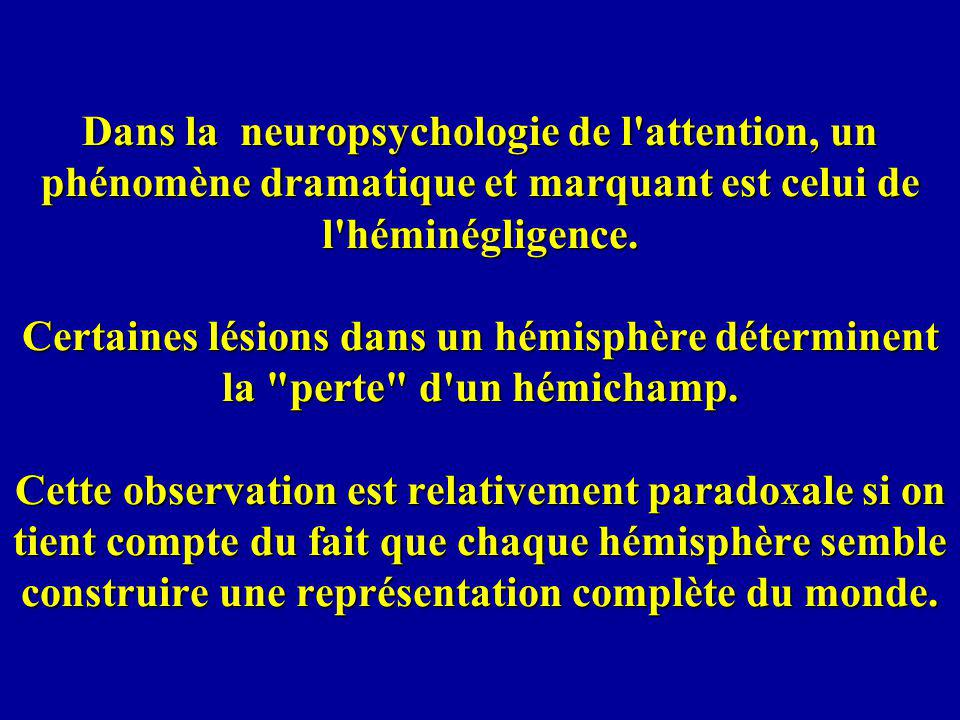 Dans la neuropsychologie de l'attention, un phénomène dramatique et marquant est celui de l'héminégligence. Certaines lésions dans un hémisphère déter