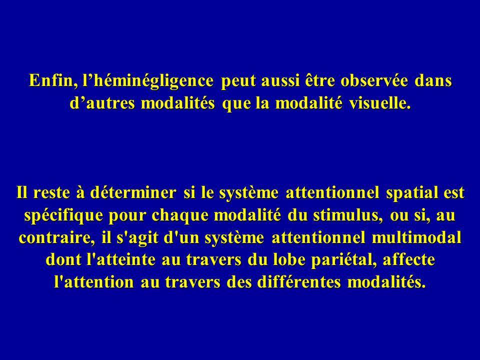 Enfin, lhéminégligence peut aussi être observée dans dautres modalités que la modalité visuelle.