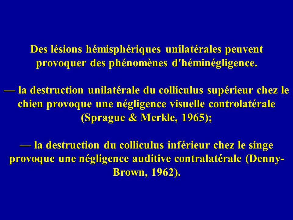 Agnosie phonologique auditive: Beauvois et al.