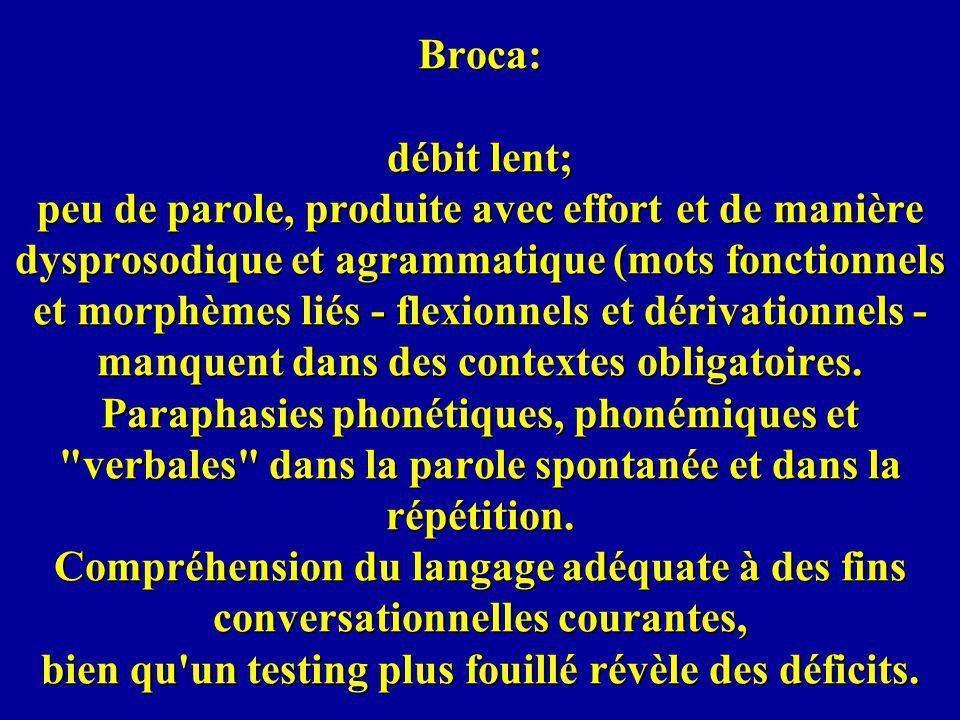 Broca: débit lent; peu de parole, produite avec effort et de manière dysprosodique et agrammatique (mots fonctionnels et morphèmes liés - flexionnels et dérivationnels - manquent dans des contextes obligatoires.