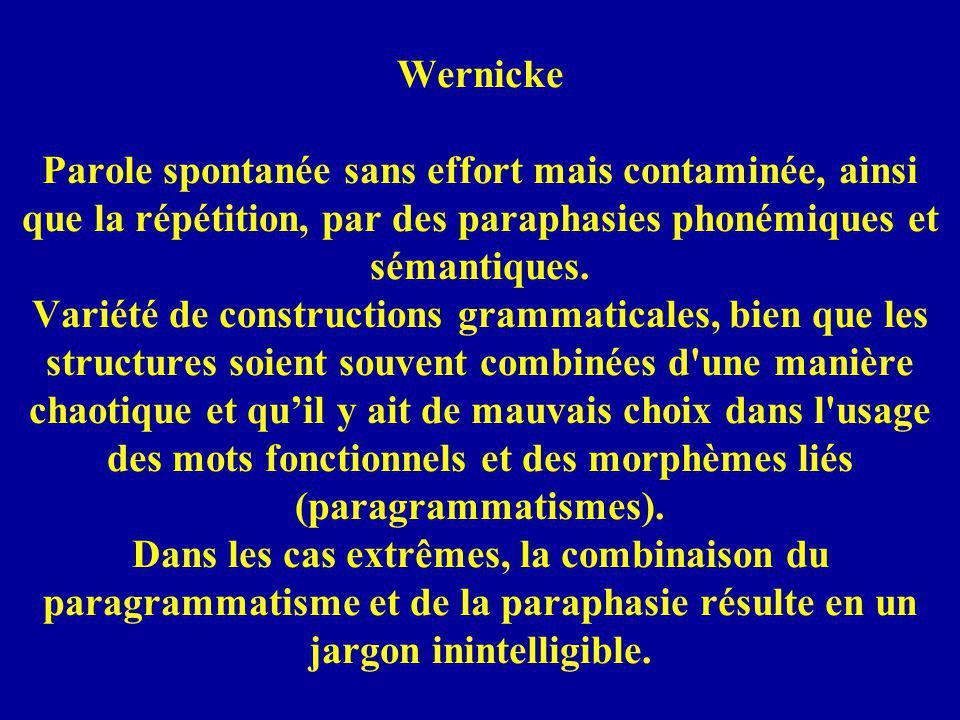 Wernicke Parole spontanée sans effort mais contaminée, ainsi que la répétition, par des paraphasies phonémiques et sémantiques. Variété de constructio
