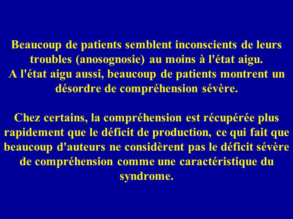 Beaucoup de patients semblent inconscients de leurs troubles (anosognosie) au moins à l'état aigu. A l'état aigu aussi, beaucoup de patients montrent