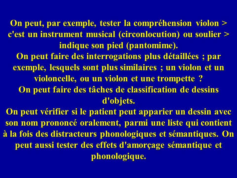 On peut, par exemple, tester la compréhension violon > c'est un instrument musical (circonlocution) ou soulier > indique son pied (pantomime). On peut