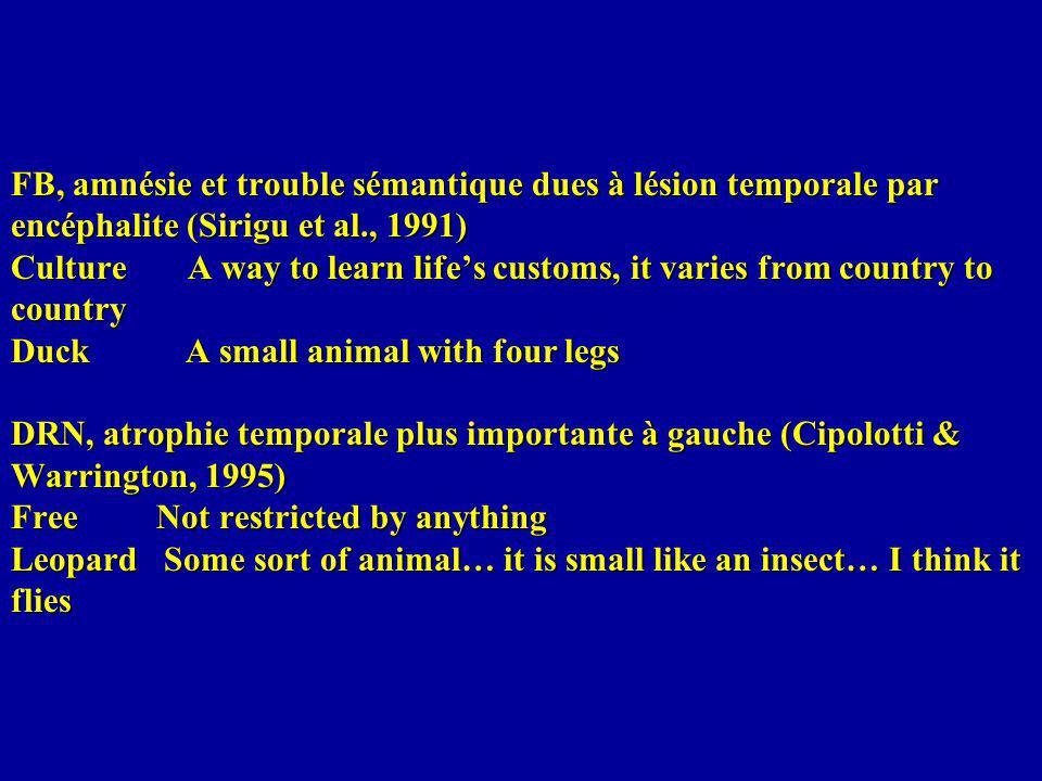 FB, amnésie et trouble sémantique dues à lésion temporale par encéphalite (Sirigu et al., 1991) Culture A way to learn lifes customs, it varies from c