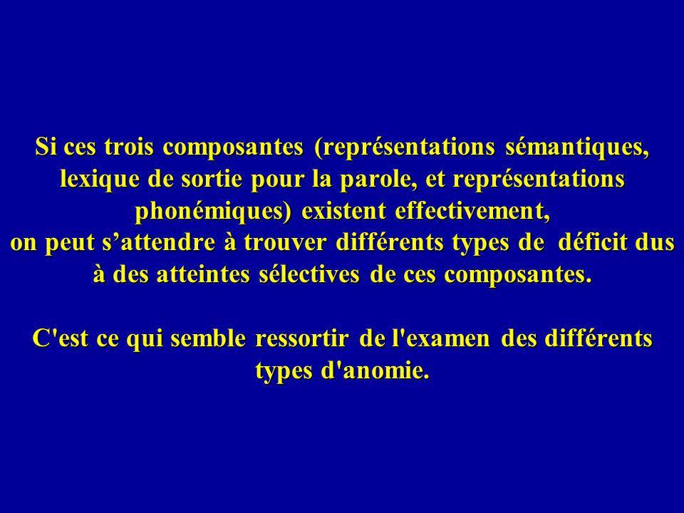 Si ces trois composantes (représentations sémantiques, lexique de sortie pour la parole, et représentations phonémiques) existent effectivement, on peut sattendre à trouver différents types de déficit dus à des atteintes sélectives de ces composantes.
