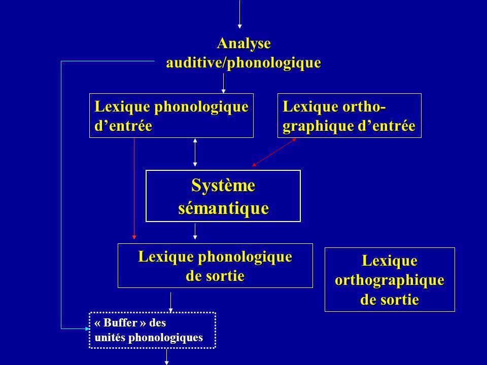 Analyse auditive/phonologique Lexique phonologique dentrée Lexique ortho- graphique dentrée Systèmesémantique Lexique phonologique de sortie Lexique o