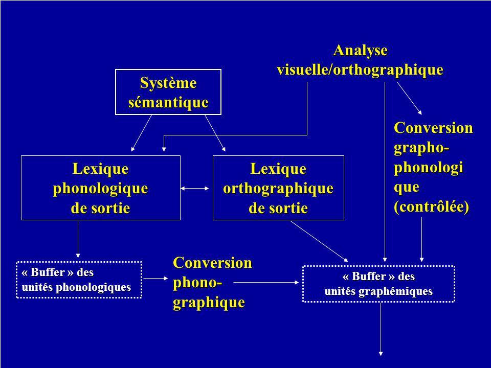 Systèmesémantique Lexique orthographique de sortie Lexique phonologique de sortie « Buffer » des unités phonologiques Conversion phono- graphique « Buffer » des unités graphémiques Analysevisuelle/orthographique Conversion grapho- phonologique(contrôlée)