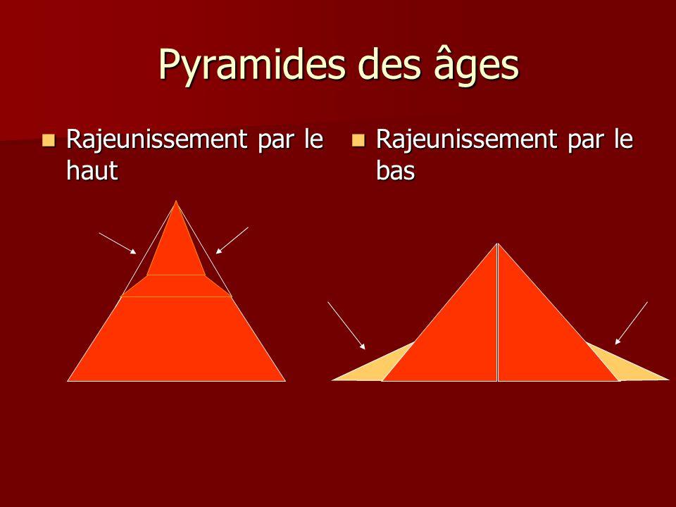 Pyramides des âges Rajeunissement par le haut Rajeunissement par le haut Rajeunissement par le bas Rajeunissement par le bas