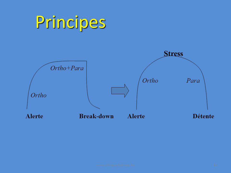 Principes AlerteBreak-down Ortho Ortho+Para Alerte Ortho Détente Para Stress www.cliniquedustress.be15