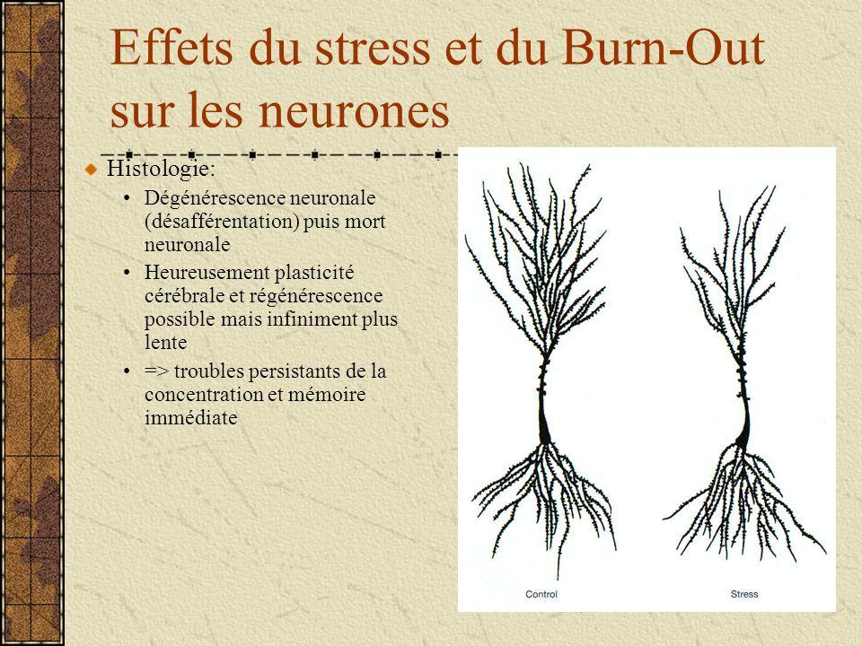 Effets du stress et du Burn-Out sur les neurones Histologie: Dégénérescence neuronale (désafférentation) puis mort neuronale Heureusement plasticité c