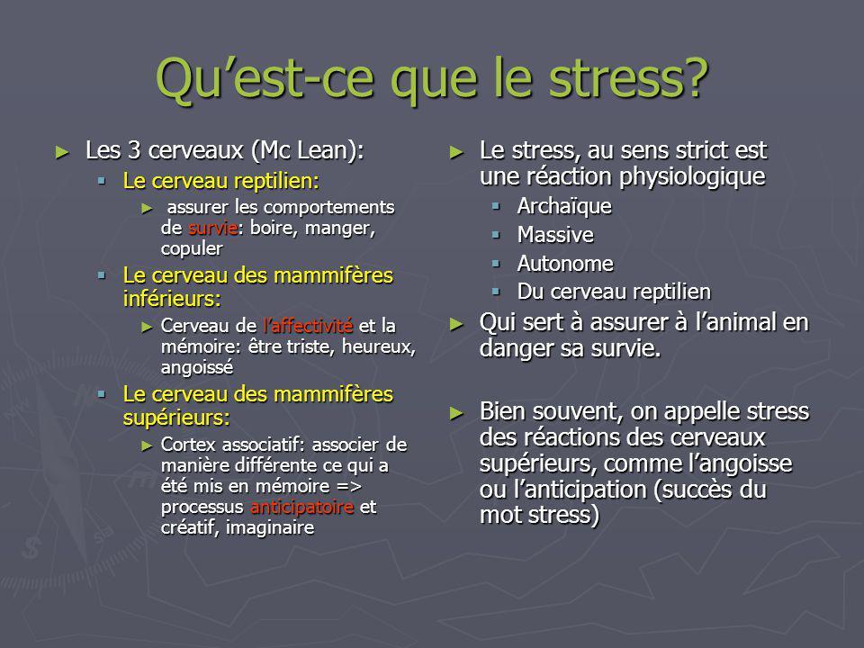 Quest-ce que le stress.