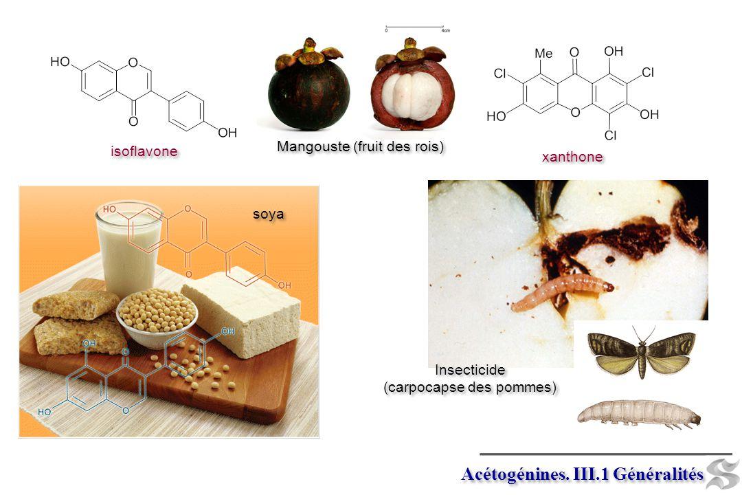 Macrolides et polyéthers. III.5.1 Biogénèse érythromycine monensine