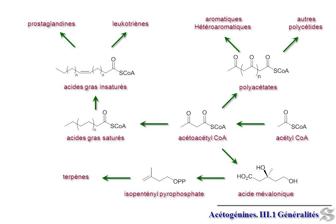 Acétogénines. III.2 -élimination palmitate FAD FADH 2 triglycéride de palmitate CoASH