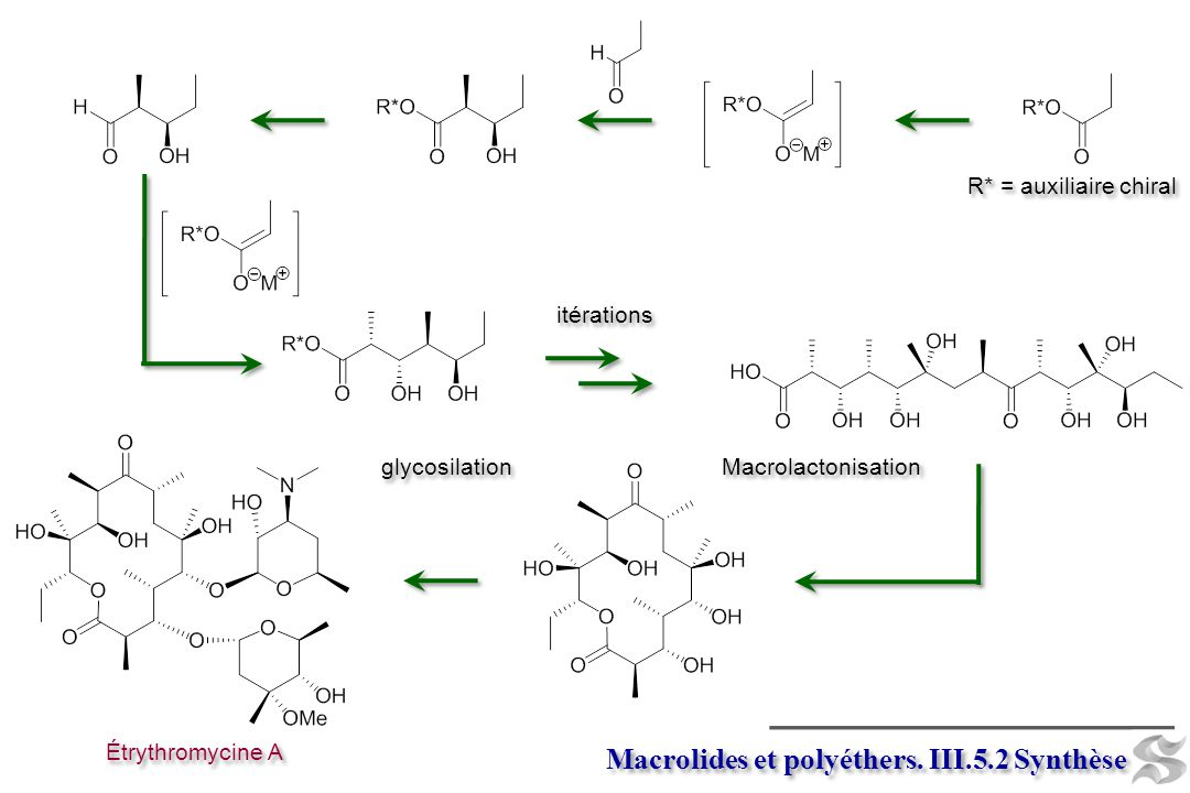 Macrolides et polyéthers. III.5.2 Synthèse Macrolactonisation Étrythromycine A glycosilation R* = auxiliaire chiral itérations