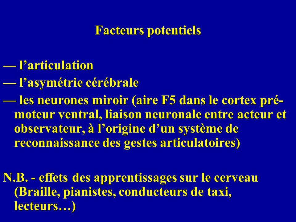 Facteurs potentiels larticulation larticulation lasymétrie cérébrale lasymétrie cérébrale les neurones miroir (aire F5 dans le cortex pré- moteur ventral, liaison neuronale entre acteur et observateur, à lorigine dun système de reconnaissance des gestes articulatoires) les neurones miroir (aire F5 dans le cortex pré- moteur ventral, liaison neuronale entre acteur et observateur, à lorigine dun système de reconnaissance des gestes articulatoires) N.B.