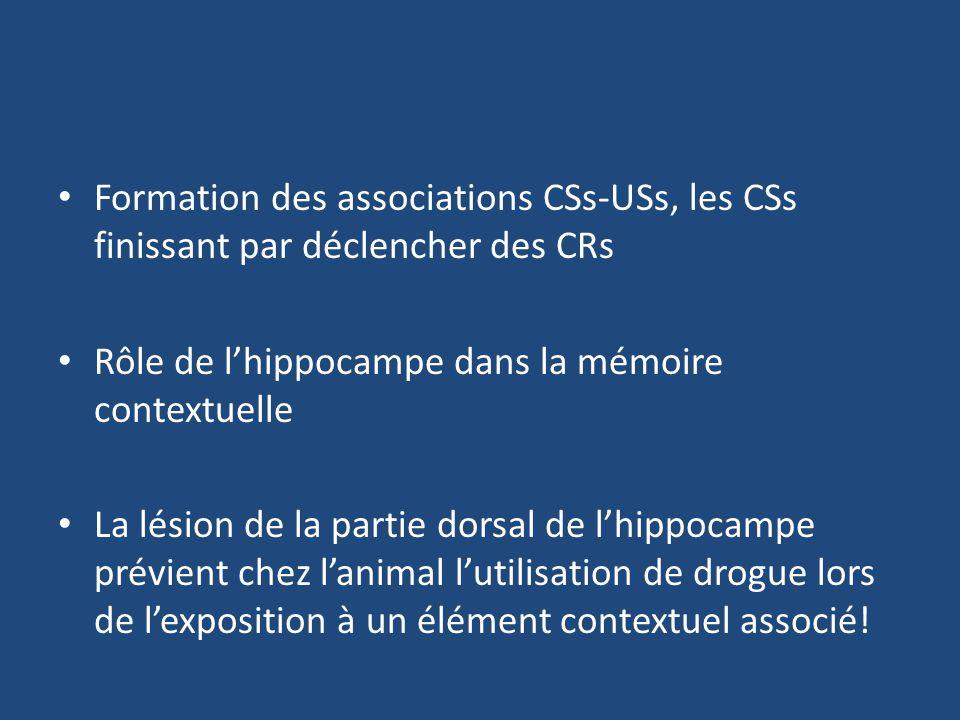 Formation des associations CSs-USs, les CSs finissant par déclencher des CRs Rôle de lhippocampe dans la mémoire contextuelle La lésion de la partie d