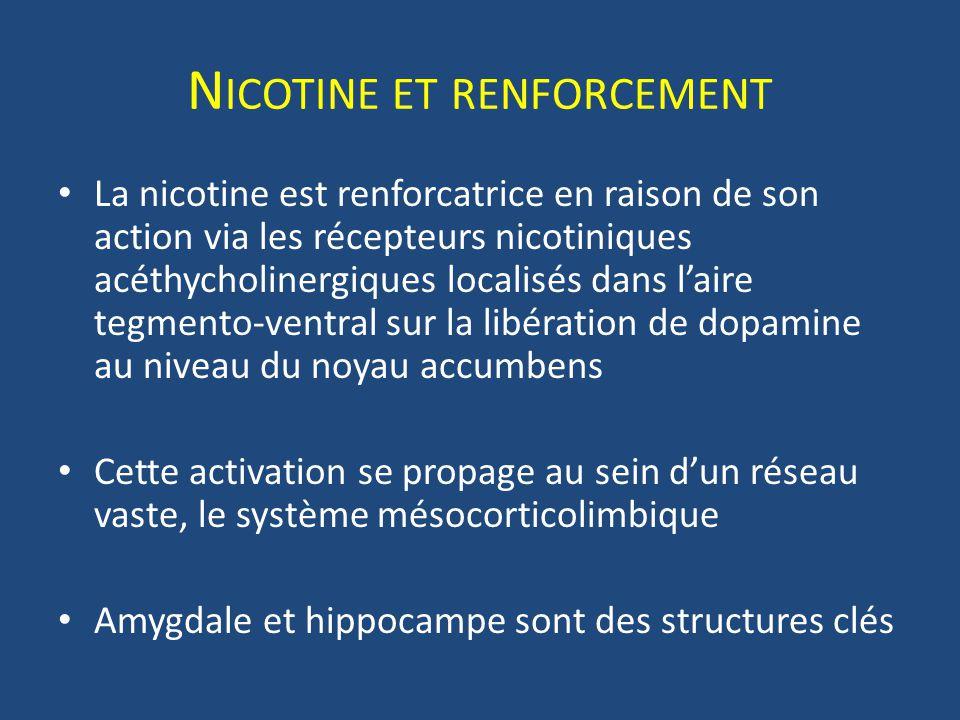 N ICOTINE ET RENFORCEMENT La nicotine est renforcatrice en raison de son action via les récepteurs nicotiniques acéthycholinergiques localisés dans la