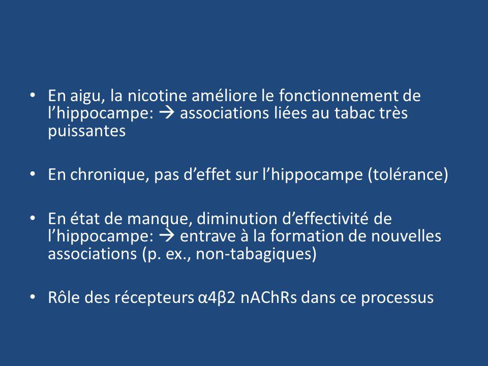 En aigu, la nicotine améliore le fonctionnement de lhippocampe: associations liées au tabac très puissantes En chronique, pas deffet sur lhippocampe (