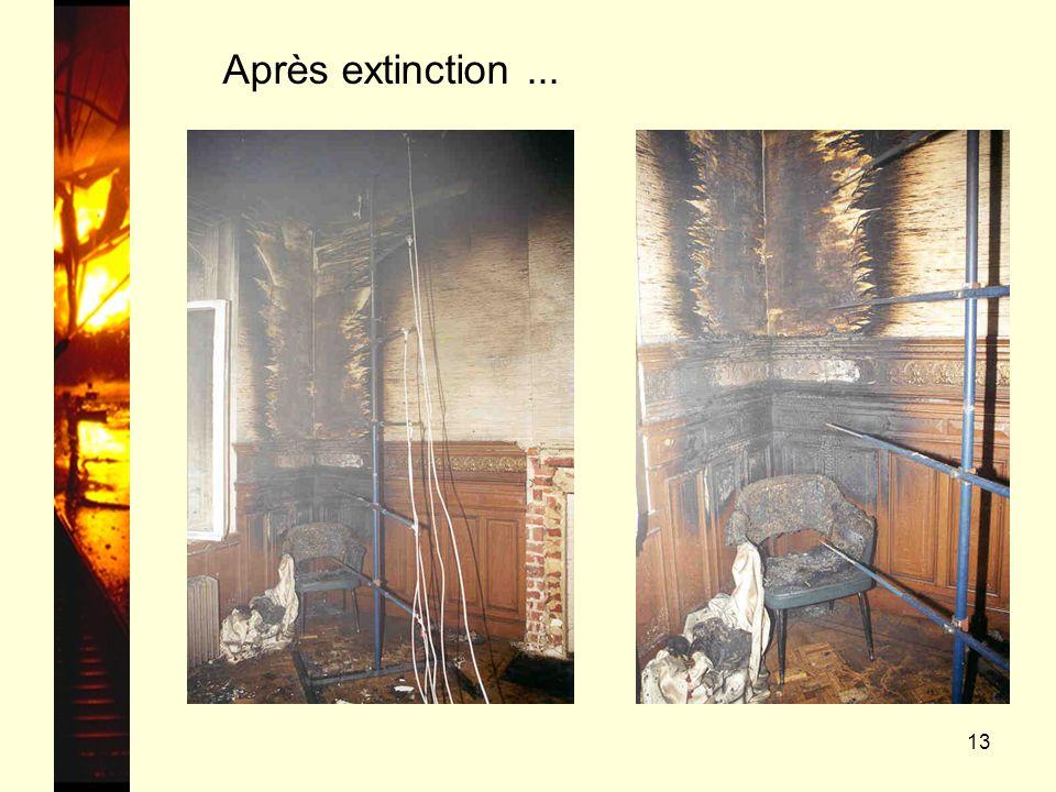13 Après extinction...