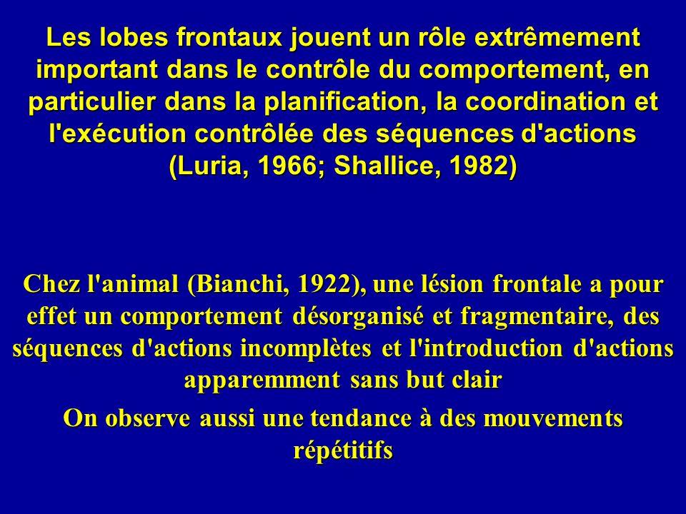 Mensonge Recherche d un marqueur du mensonge ind é pendant de l anxi é t é ou de la culpabilit é inhibition de la r é ponse vraie (n é gation intentionnelle de la v é rit é subjective) Langleben et al.