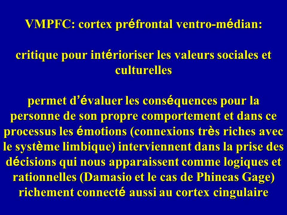 VMPFC: cortex pr é frontal ventro-m é dian: critique pour int é rioriser les valeurs sociales et culturelles permet d é valuer les cons é quences pour la personne de son propre comportement et dans ce processus les é motions (connexions tr è s riches avec le syst è me limbique) interviennent dans la prise des d é cisions qui nous apparaissent comme logiques et rationnelles (Damasio et le cas de Phineas Gage) richement connect é aussi au cortex cingulaire