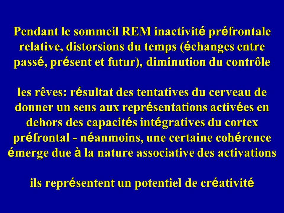 Pendant le sommeil REM inactivit é pr é frontale relative, distorsions du temps ( é changes entre pass é, pr é sent et futur), diminution du contrôle les rêves: r é sultat des tentatives du cerveau de donner un sens aux repr é sentations activ é es en dehors des capacit é s int é gratives du cortex pr é frontal - n é anmoins, une certaine coh é rence é merge due à la nature associative des activations ils repr é sentent un potentiel de cr é ativit é