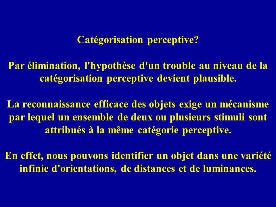 Catégorisation perceptive.