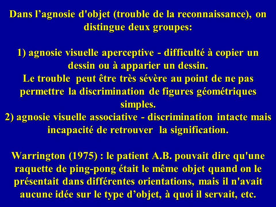 Dans lagnosie d objet (trouble de la reconnaissance), on distingue deux groupes: 1) agnosie visuelle aperceptive - difficulté à copier un dessin ou à apparier un dessin.