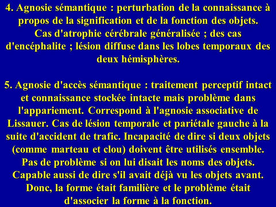 4. Agnosie sémantique : perturbation de la connaissance à propos de la signification et de la fonction des objets. Cas d'atrophie cérébrale généralisé