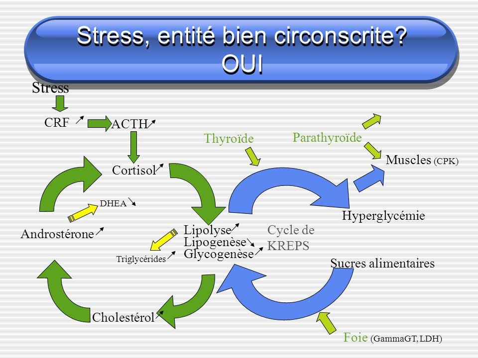 Stress, entité bien circonscrite? OUI Lipolyse Lipogenèse Glycogenèse Cortisol Cholestérol Androstérone ACTH CRF Stress DHEA Cycle de KREPS Triglycéri