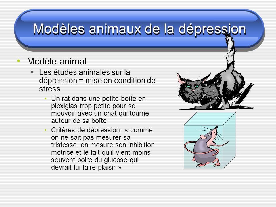 Modèles animaux de la dépression Modèle animal Les études animales sur la dépression = mise en condition de stress Un rat dans une petite boîte en ple
