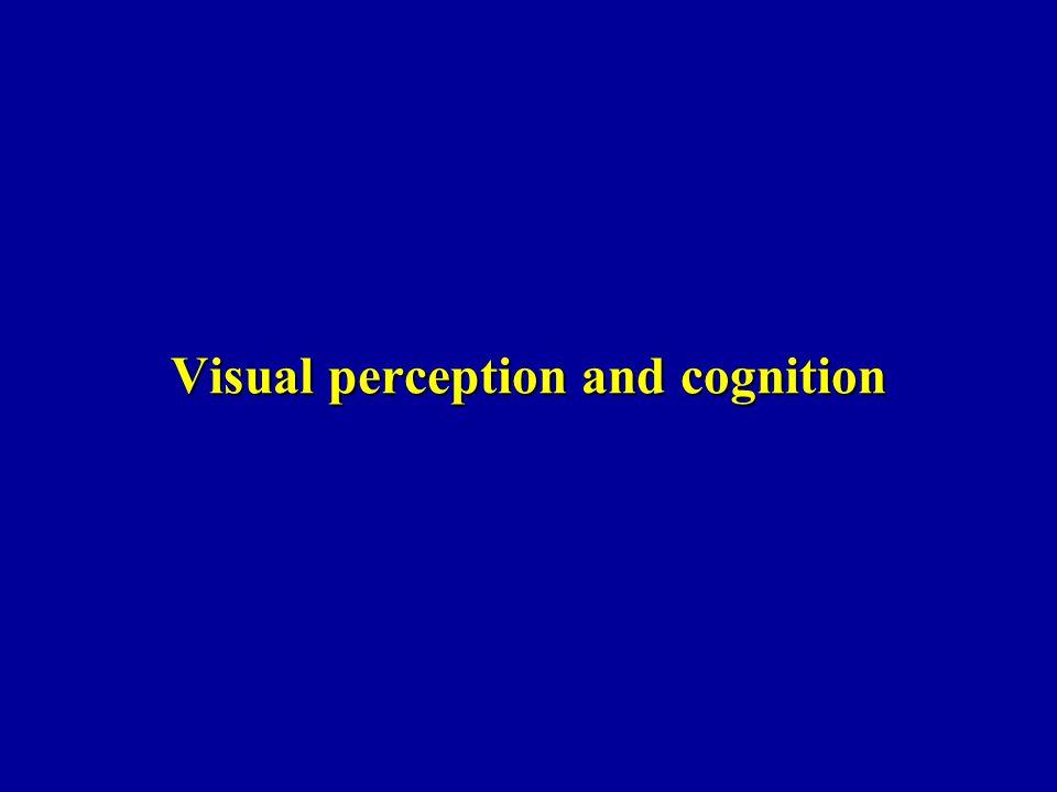 Kitayama et al.(2003) Présentation dun carré dans lequel une ligne verticale est imprimée.