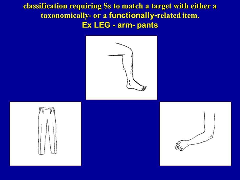 classification requiring Ss to match a target with either a taxonomically- or a functionally- related item. Ex LEG - arm- pants