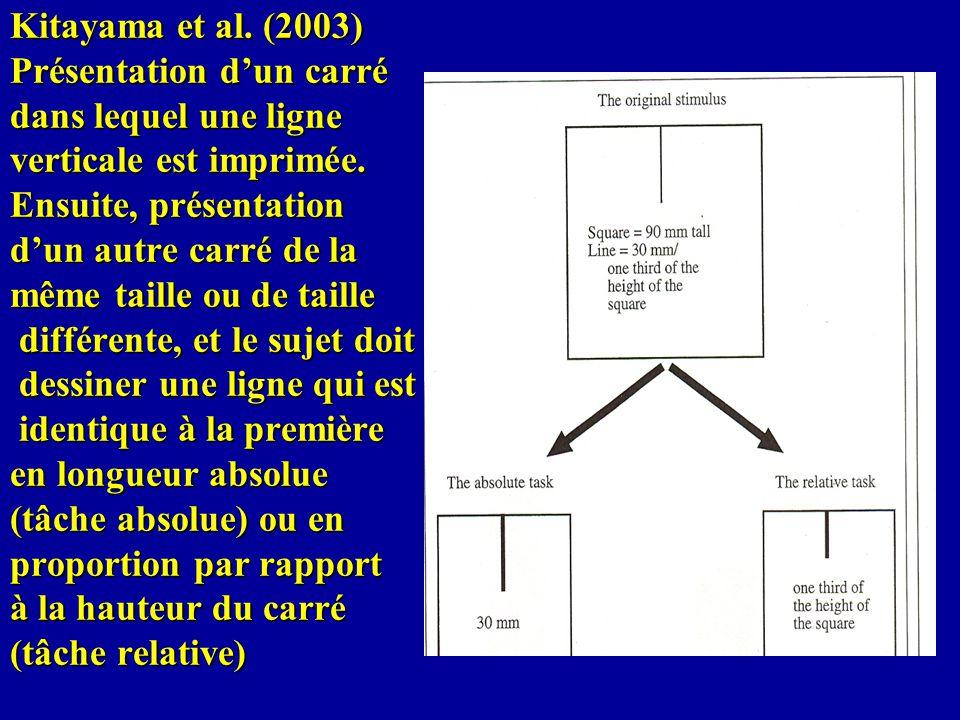 Kitayama et al. (2003) Présentation dun carré dans lequel une ligne verticale est imprimée. Ensuite, présentation dun autre carré de la même taille ou