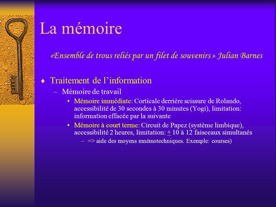 La mémoire «Ensemble de trous reliés par un filet de souvenirs » Julian Barnes Traitement de linformation –Mémoire de travail Mémoire immédiate: Corti