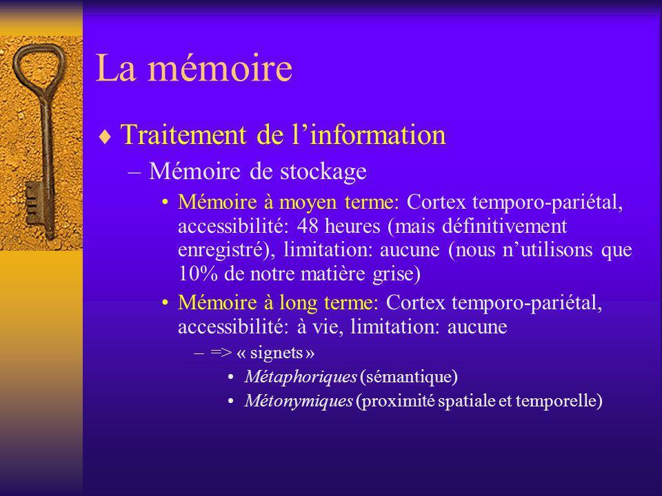 La mémoire Traitement de linformation –Mémoire de stockage Mémoire à moyen terme: Cortex temporo-pariétal, accessibilité: 48 heures (mais définitiveme