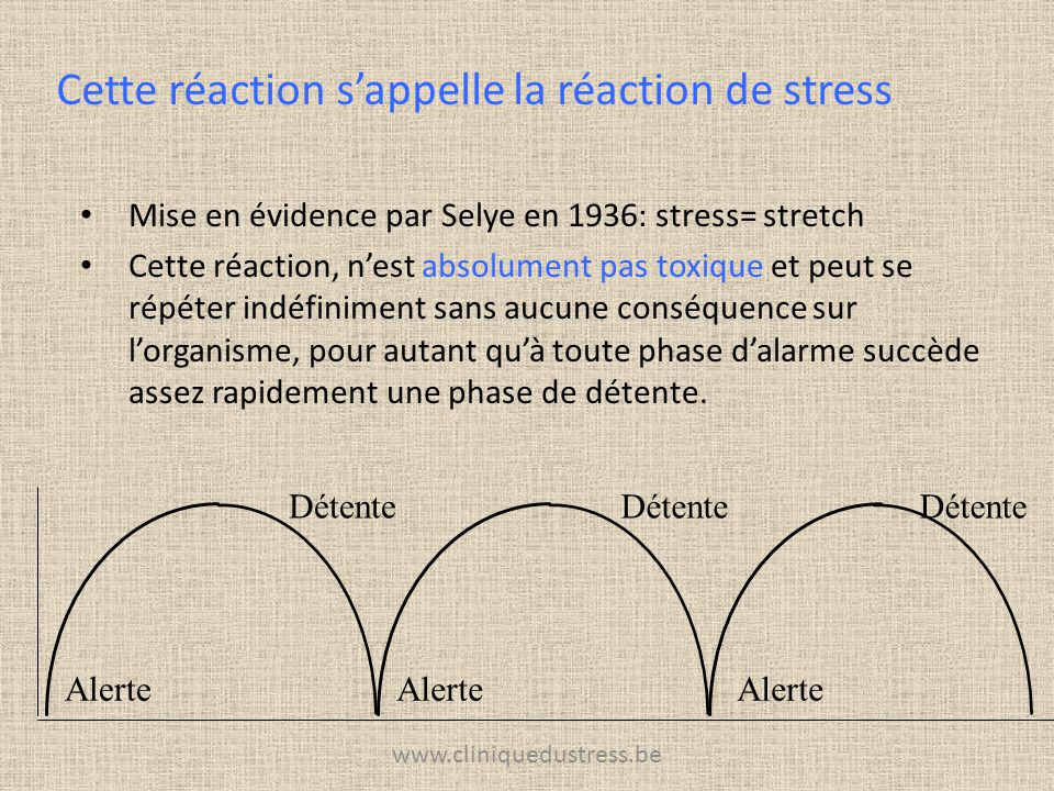 www.cliniquedustress.be Mise en évidence par Selye en 1936: stress= stretch Cette réaction, nest absolument pas toxique et peut se répéter indéfinimen